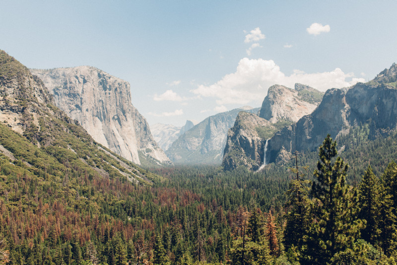 View of Yosemite National Park granite peaks and trees