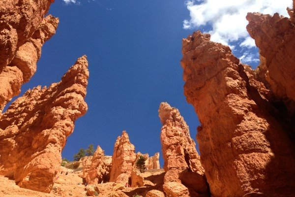 Hoodoos at Bryce Canyon