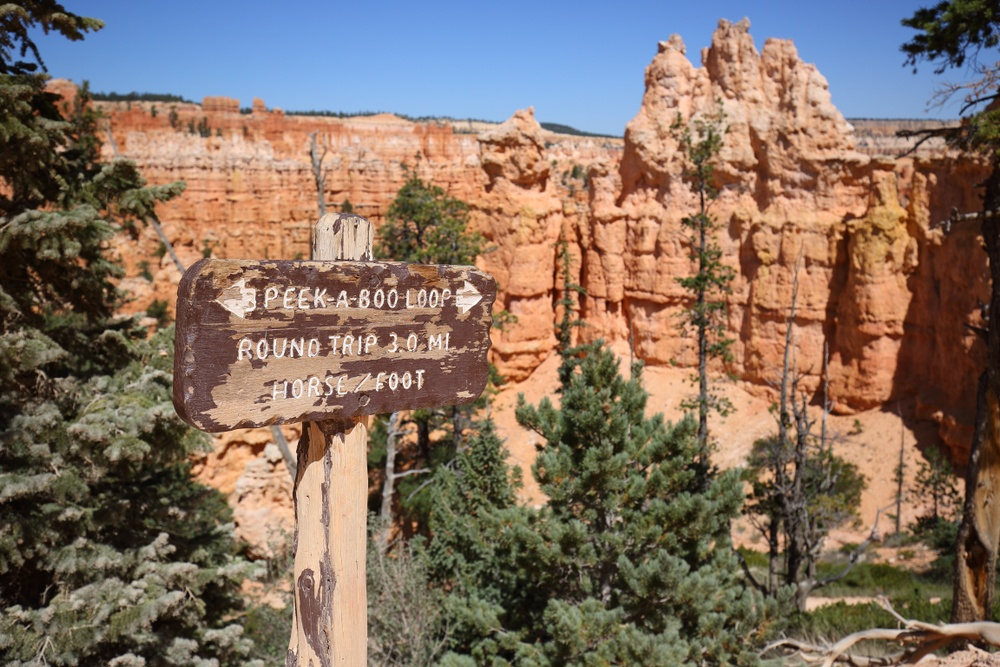 Peek-A-Boo Loop trail, Bryce Canyon