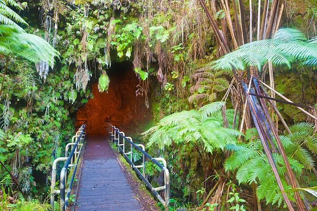 Entrance to a lava tube in Hawaii