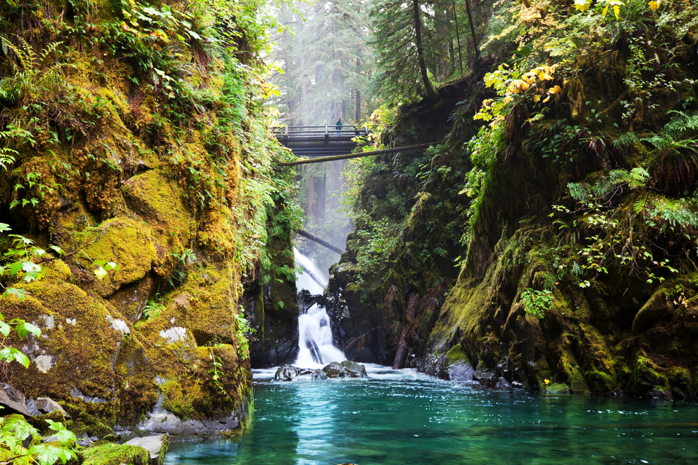 Waterfall with bridge at Olympic National Park